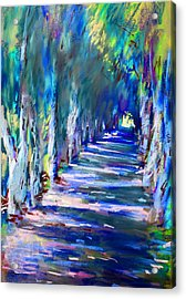 Tree Lined Road Acrylic Print by Ylli Haruni