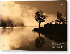 Tree Midst The Fog- Sepia Acrylic Print by Gina Collins