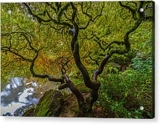 Tree Of Life Acrylic Print by Ken Stanback