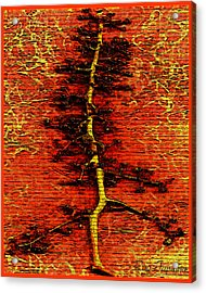 Tree Of Life Acrylic Print by Ray Tapajna