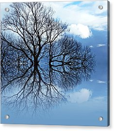 Tree Of Life Acrylic Print by Sharon Lisa Clarke