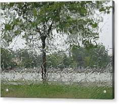 Tree Of Life Stands In A Storm Acrylic Print by Judy Via-Wolff