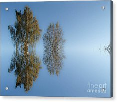 Tree Reflection In Vaerebrovej Acrylic Print by Michael Canning