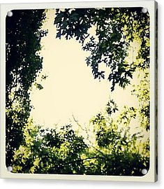 #trees #green #sky #pattern #style Acrylic Print by My Mcwp