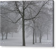 Trees In The Winter Acrylic Print by Yumi Johnson
