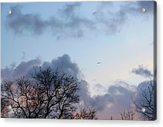 Trees On The Background Of A Cloudy Sky At Twilight Acrylic Print by Gal Ashkenazi