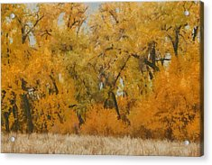 Trees Painterly Acrylic Print