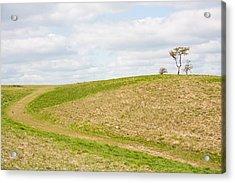Treesome  Acrylic Print by Semmick Photo