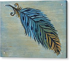 Tri-color Feather Acrylic Print by Kristen Fagan