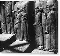 Tribute Bearers, Persepolis, Iran Acrylic Print by Science Source