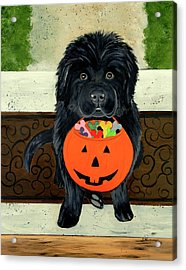 Acrylic Print featuring the painting Trick Or Treat by Sharon Nummer