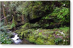 Trickle Of Green Acrylic Print by Michael Carrothers