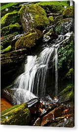 Trickle Trickle Acrylic Print by Love Photography By Mandy