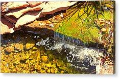 Trickle Waterfall Acrylic Print by Usha Shantharam