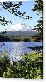 Trillium Lake At Mt. Hood Acrylic Print by Athena Mckinzie