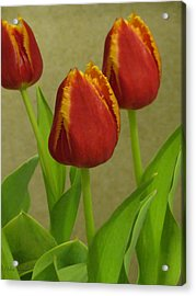 Triple Crown Floral Acrylic Print by Debra     Vatalaro