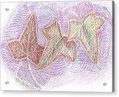 Triple Leaves Acrylic Print by Anne-Elizabeth Whiteway