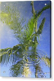 Tropical Abstraction Acrylic Print