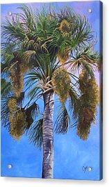 Tropical Breezes Acrylic Print by Karen Casciani