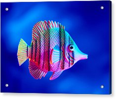 Tropical Fish Close-up Acrylic Print by Lawrence Lawry