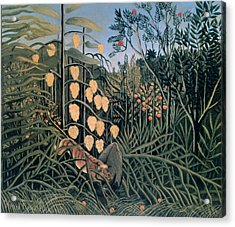 'tropical Forest' By Henri Rousseau Acrylic Print by Photos.com