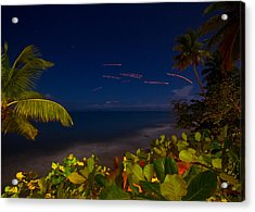 Tropical Night Acrylic Print by Tim Fitzwater
