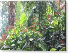 Acrylic Print featuring the photograph Tropical Paradise by Donna  Smith