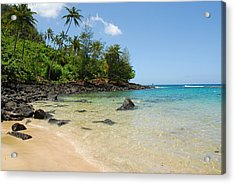 Acrylic Print featuring the photograph Tropical Paradise by Lynn Bauer