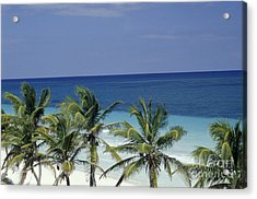 Acrylic Print featuring the photograph Tropical Paradise Sian Kaan Mexico by John  Mitchell