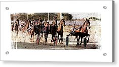 Acrylic Print featuring the photograph Trotting 3 by Pedro Cardona