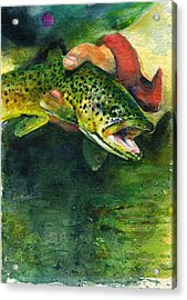 Trout In Hand Acrylic Print by John D Benson