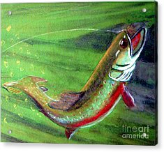 Trout On - Pastel Painting Acrylic Print by Merton Allen