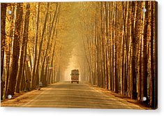 Truck In Golden Tunnel Acrylic Print by PKG Photography