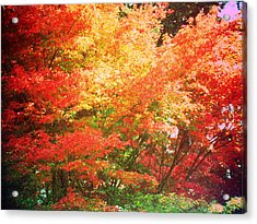 True Colors Acrylic Print by Lee Yang