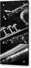 Trumpet II Acrylic Print by Paul Sisco