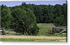Trumpet Vine And Fence At Appomattox Courthouse Virginia Acrylic Print by Teresa Mucha
