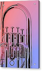 Tuba Euphonium Valves Isolated Acrylic Print by M K  Miller