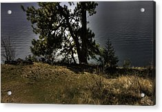 Tubbs Hill On Lake Cd'a Acrylic Print by Grover Woessner