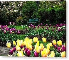 Acrylic Print featuring the digital art Tulip Gardens  by Glenna McRae