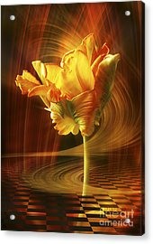 Tulip In Movement Acrylic Print