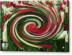 Tulip Tornado Acrylic Print by Rick Rauzi
