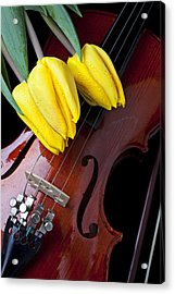 Tulips And Violin Acrylic Print by Garry Gay
