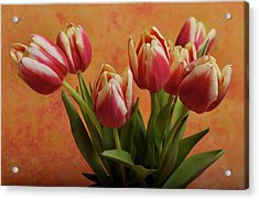 Acrylic Print featuring the photograph Tulips by James Bethanis