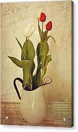 Tulips Acrylic Print by Kathy Jennings