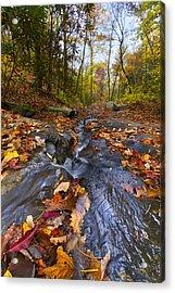Tumbling Leaves Acrylic Print by Debra and Dave Vanderlaan