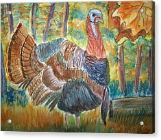 Turkey In Fall Acrylic Print by Belinda Lawson