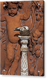 Turkey Vulture Skull Acrylic Print by Garry Gay