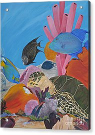 Turtle And Friends Acrylic Print by Barbara Petersen