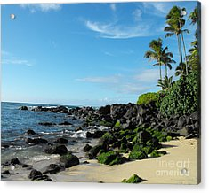 Turtle Beach Oahu Hawaii Acrylic Print