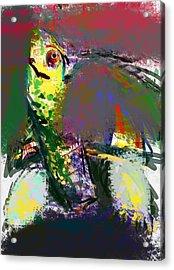 Turtle Acrylic Print by James Thomas